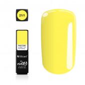 Hybrid Gel - Flexy 21/1, 4,5g