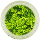 Flitre CD - zelené pistáciové