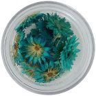 Sušené kvety - tyrkysové